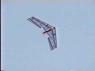 wingthing.jpg